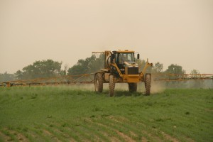 1264_Rogator_Spraying_Corn