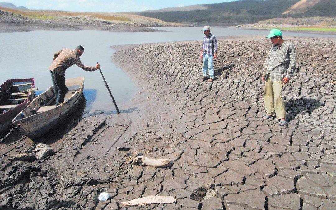 Degradación de los suelos amenaza nutrición en América Latina