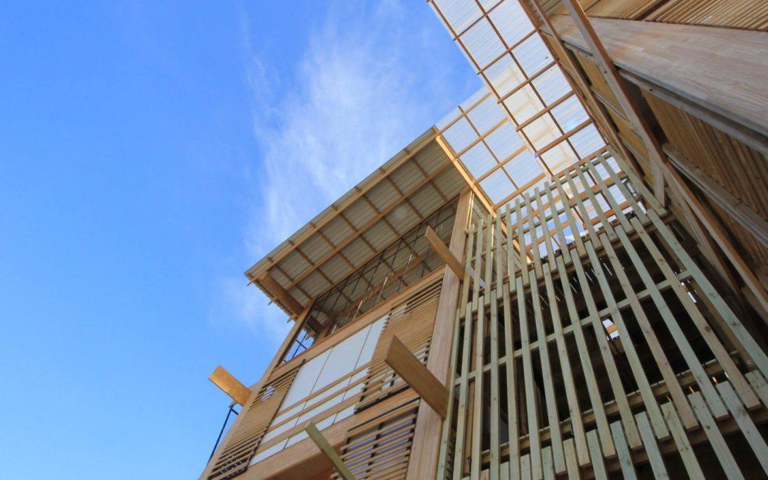 Muebles y casas de madera: aliados insospechados contra el cambio climático