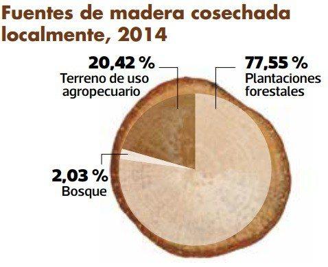 Porcentaje de árboles y plantaciones forestales