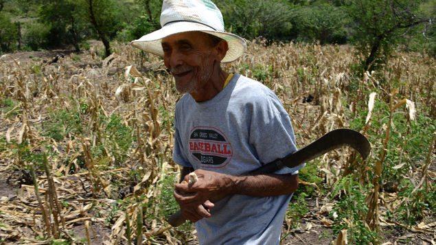 Sequia-climatico-comunidades-Honduras-FotoAFP_MEDIMA20160826_0351_5