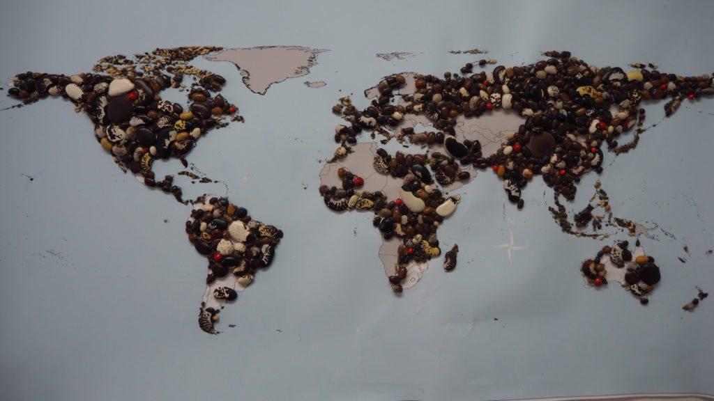 Los frijoles pueden crecer condiciones muy difíciles. Se cultivan en cualquier lado, salvo en los polos y zonas desérticas.