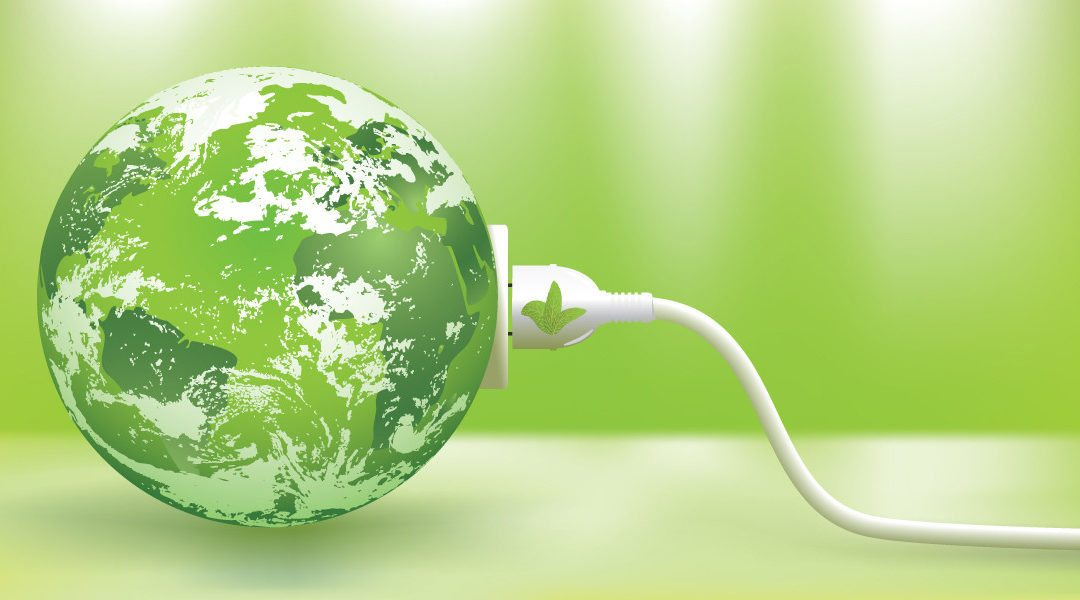 El rol del sector empresarial en la sostenibilidad
