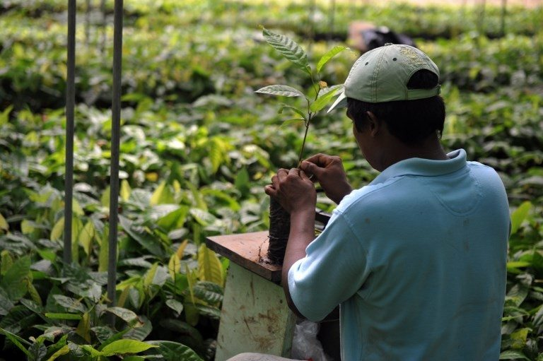 Cambiar uso de la tierra es esencial para el clima, advierten expertos de ONU