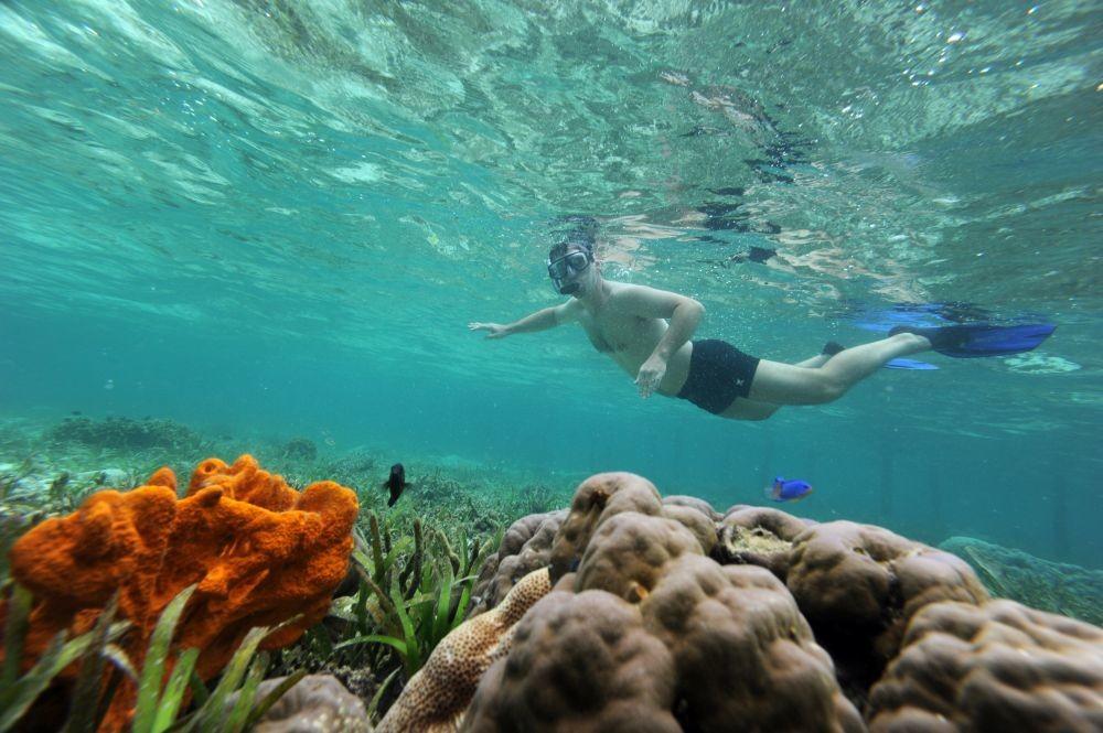 El mar se está calentando más de lo que anticipó la ONU, según nuevo estudio