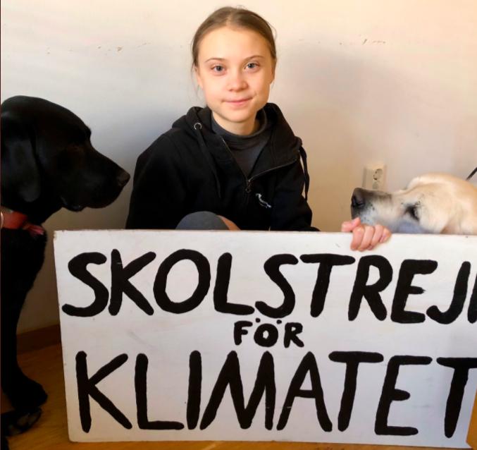 Los jóvenes continúan su batalla climática en línea