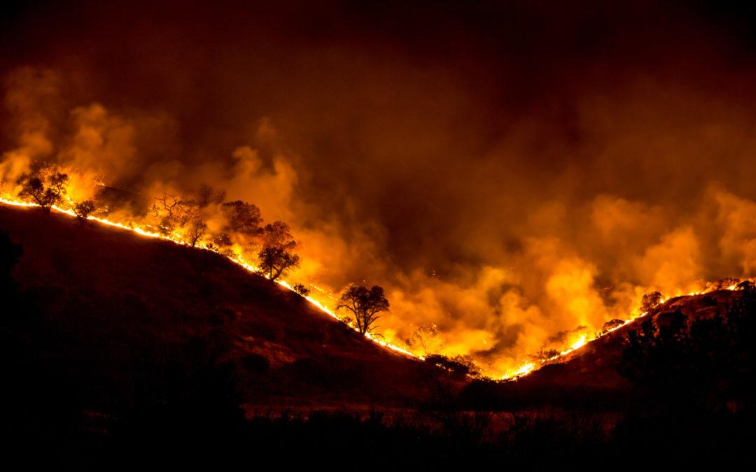 RESUMEN 2020 Cambio climático sirvió de combustible a los mega incendios del 2020
