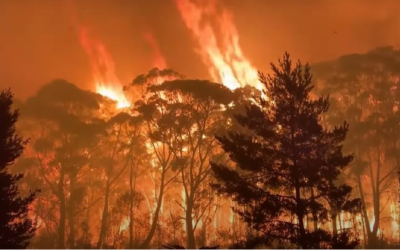 El 2020 cierra la década más cálida desde 1850