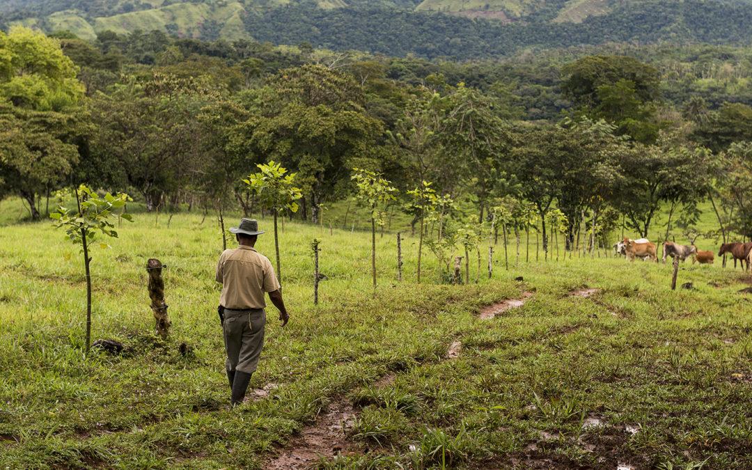 Baja productividad del suelo pone en riesgo el agua y los alimentos El desgaste del suelo provoca la disminución del 23% de la productividad agrícola