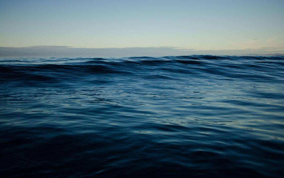Organización europea desarrollará 'copia digital' del océano para monitorear el cambio climático