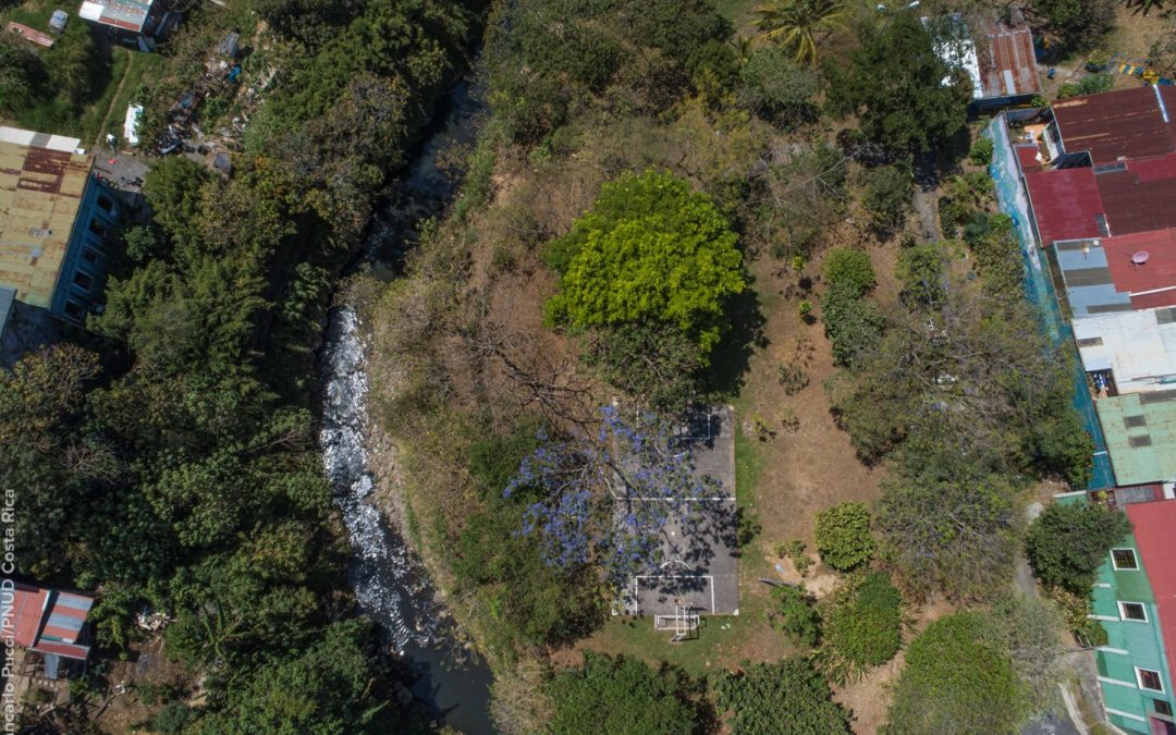 Jardines representan el 35% de la trama verde del Corredor María Aguilar