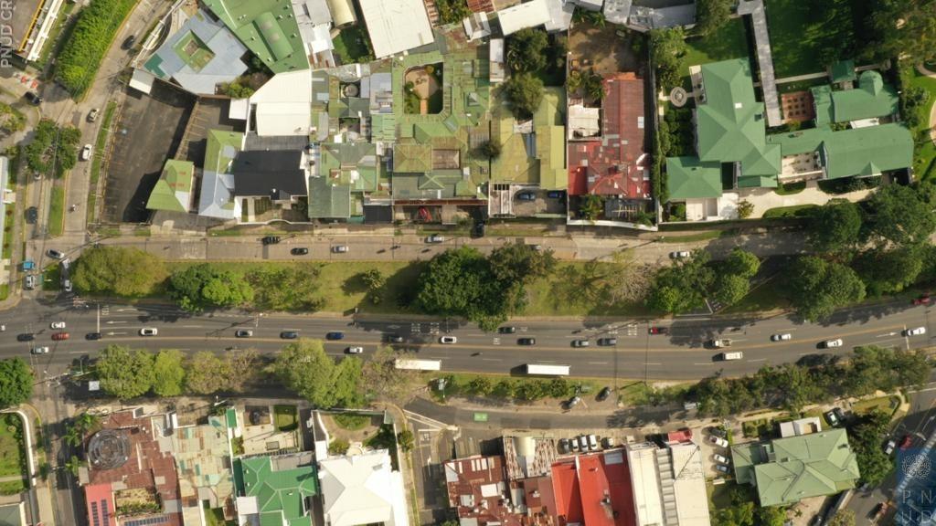Rearborización forma parte del programa 'Conexión Viva' Bulevar de Los Yoses reducirá su gris al reemplazar 80 árboles por especies nativas