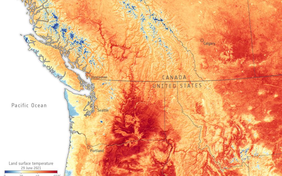 Temperaturas en Canadá y el noroeste de Estados Unidos superaron los 40 grados Ola de calor en Norteamérica sería imposible sin influencia del cambio climático